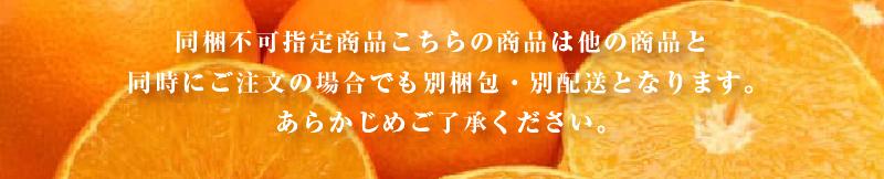 """""""中島まどんな"""""""