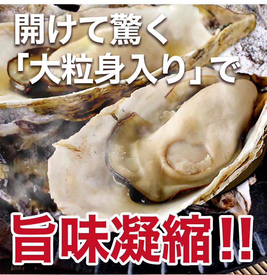 カンカン 焼き 牡蠣 三陸産牡蠣カンカン焼き 1.5kg(15個前後)